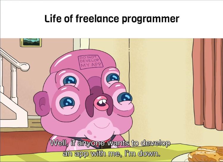 Life of a freelance programmer app developer meme