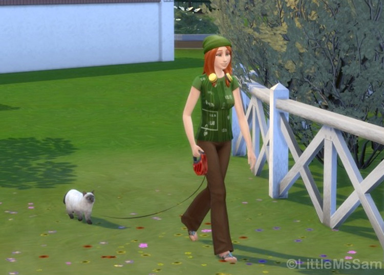 Walk Your Cat in Sims4