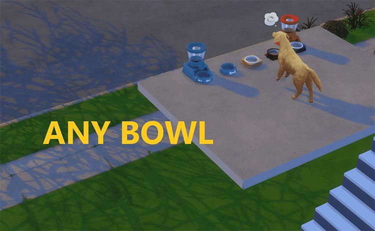 Find Pet Stuff on Other Floors mod