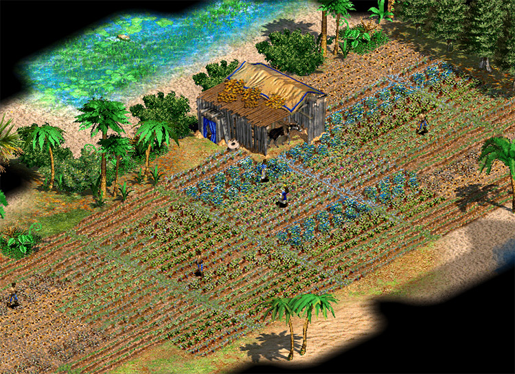 Nittlepicks Wonderful New Farms Age of Empires II