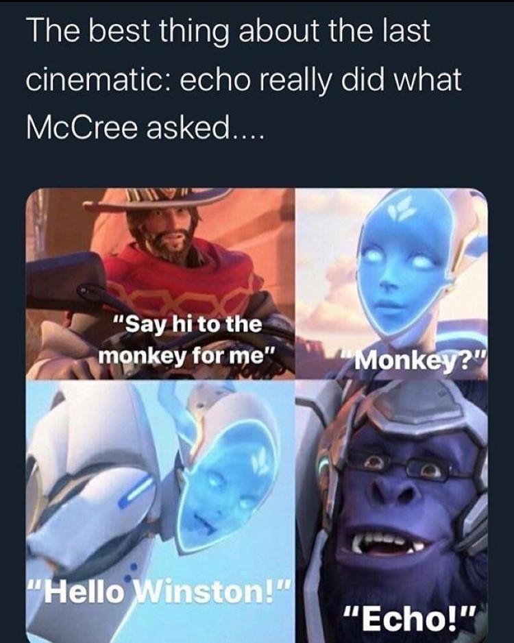 Echo Hello Winston meme