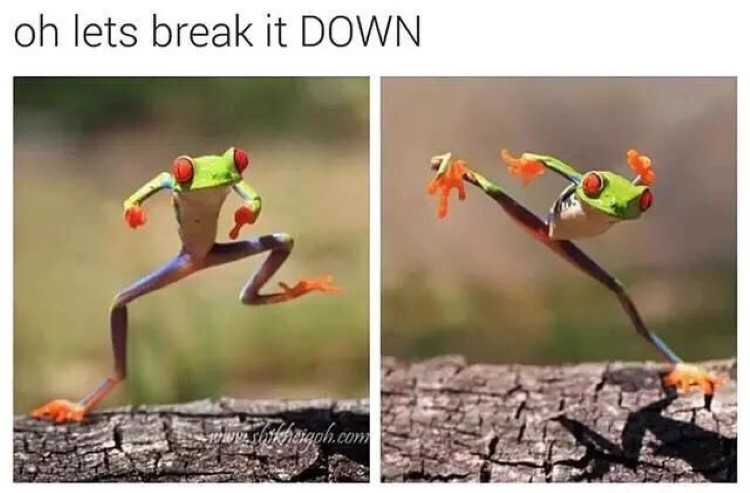 Oh lets break it down frog meme