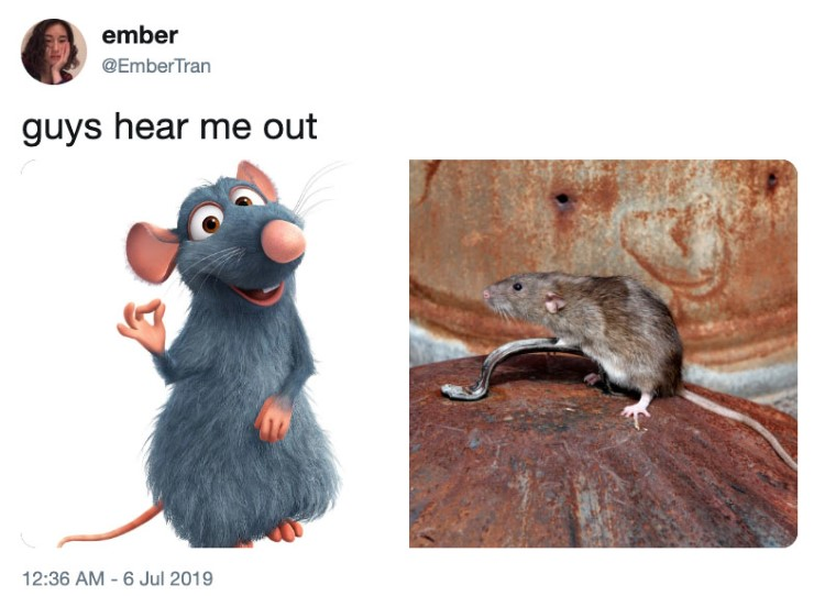 Guys hear me out, this is Ratatouille