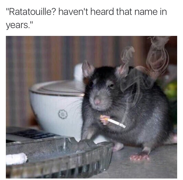 Ratatouillie? Havent heard that name in years