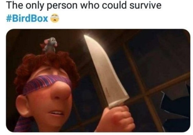Only person surviving birdbox Ratatouille