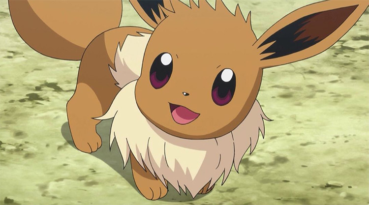 Eevee from Pokémon anime