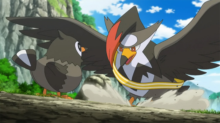 Staraptor in Pokémon anime