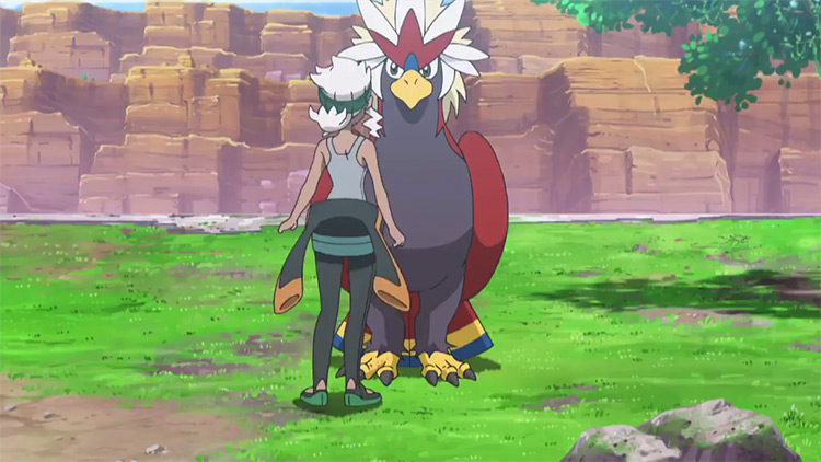 Braviary from Pokémon anime