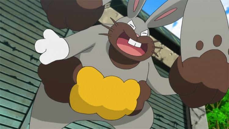 Diggersby Pokémon anime