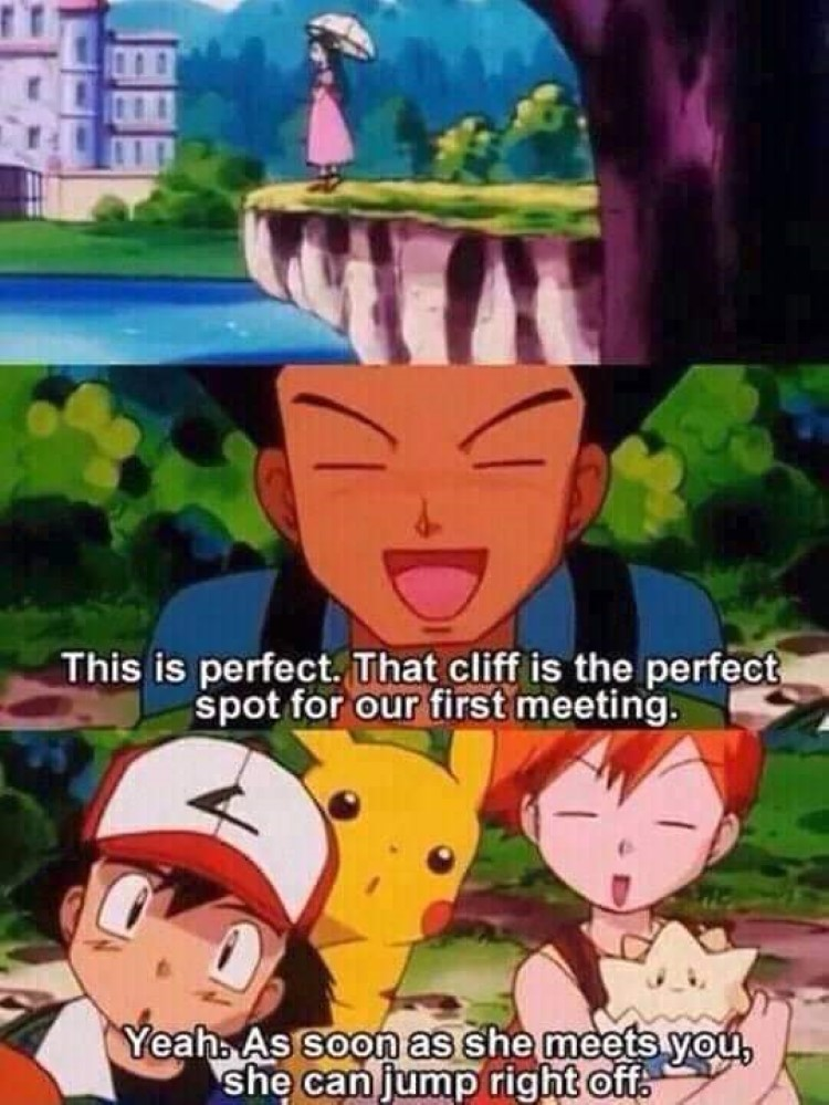 This is perfect for a cliff! Brock Pokemon meme