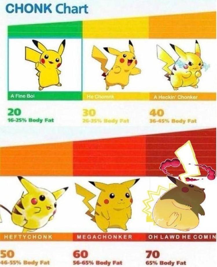 Chonk chart - Different Pikachu versions meme