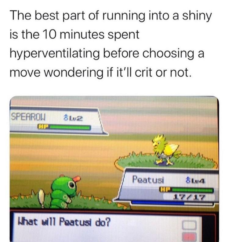 What will Peatusi do meme
