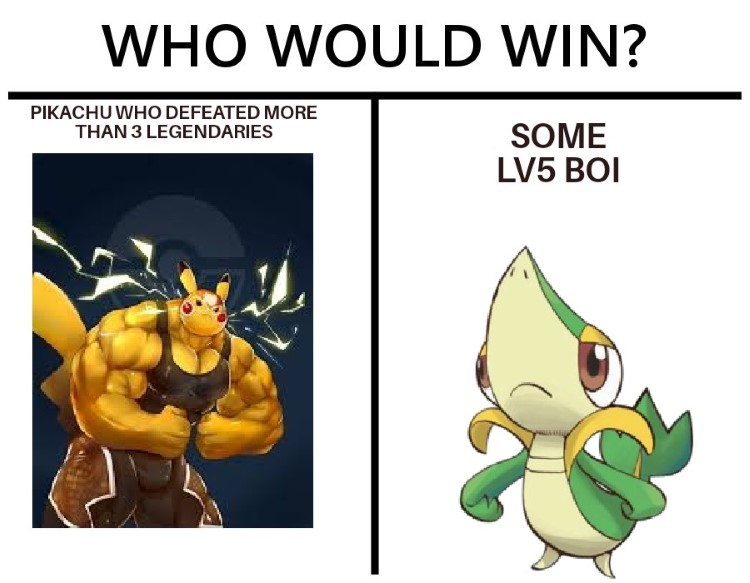 Who would win? Some level5 boi
