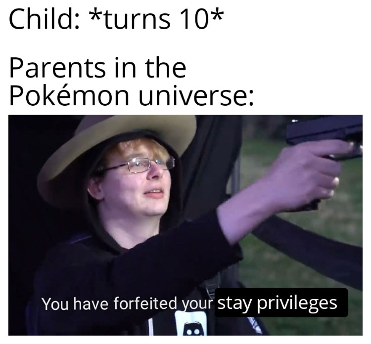 Parters in the Pokemon universe forgeit privileges