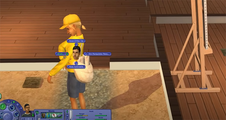 New Lifetime Wants for Sims2