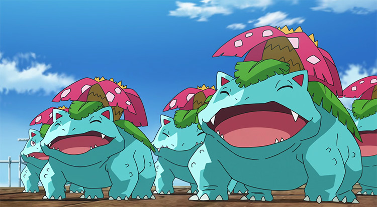 Venusaur group in the Pokemon anime