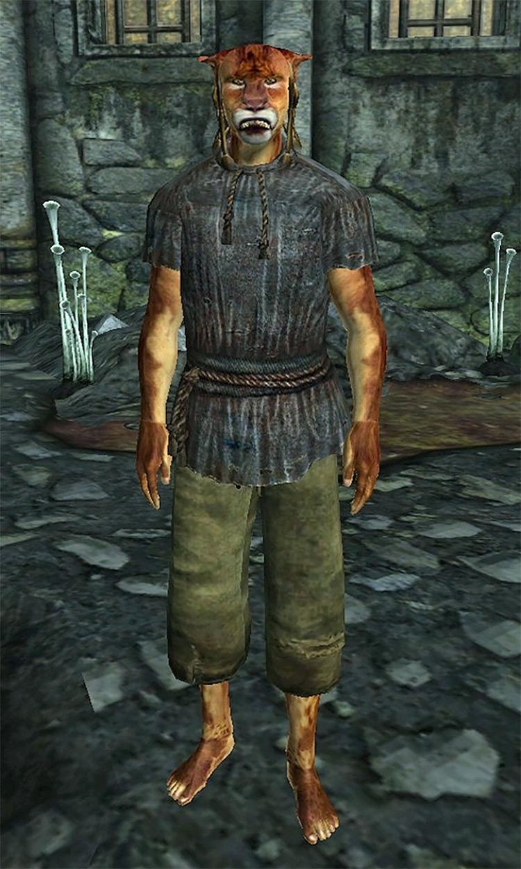 Ushnar's Terror Elder Scrolls Oblivion Quest