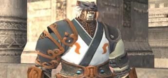 Dojo Monk Build in Final Fantasy XI