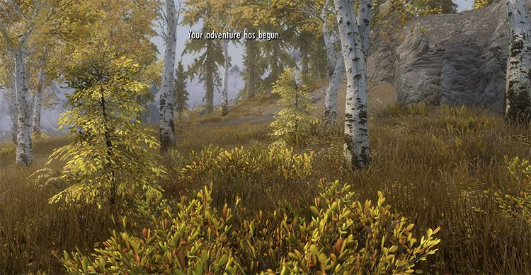 Skyrim Unbound Mod Preview