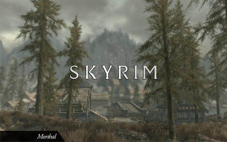 New Life Preview / Skyrim Mod