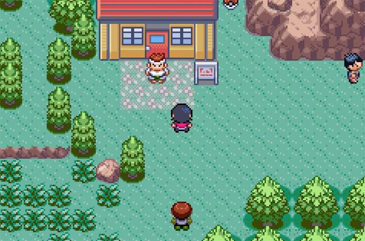 Pokémon Snakewood hack screenshot