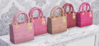 Luxury Christian Dior Purses & Handbags / Sims 4 CC