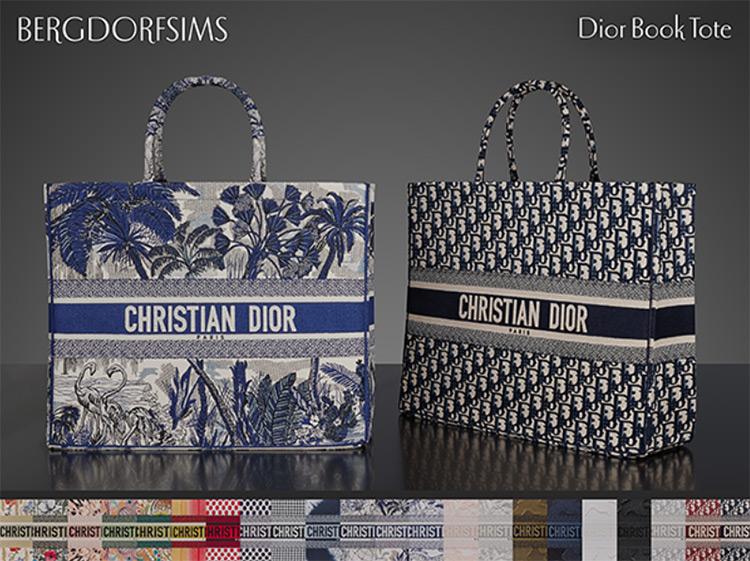 Dior Book Tote / TS4 CC