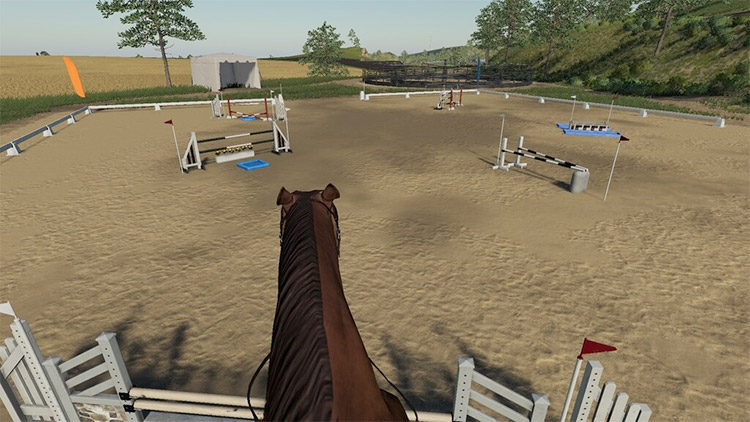 First Person Horse Riding Camera Mod for FS19