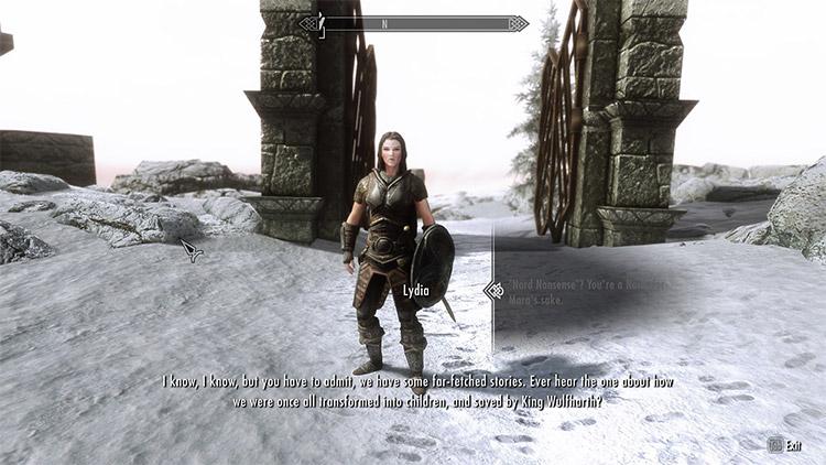 Improved Follower Dialogue For Lydia / Skyrim Mod