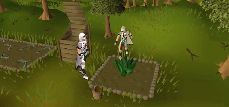 Why Bother Training Herblore in Old School RuneScape?