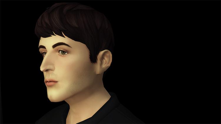 Beatle Boy's Hair for The Sims 4