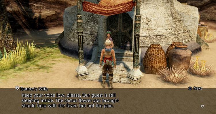 The Desert Patient FFXII Side Quest