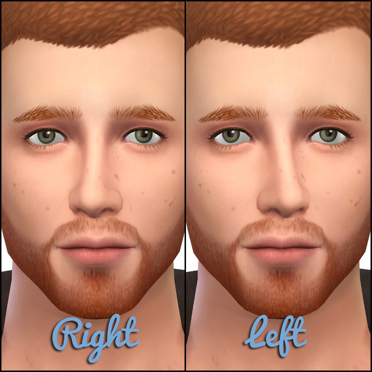 Tilted/Broken Nose Presets TS4 CC