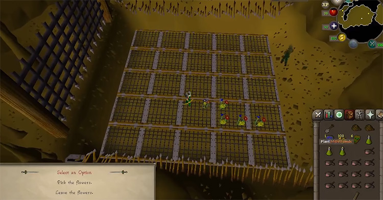 Underground Pass quest screenshot from OSRS