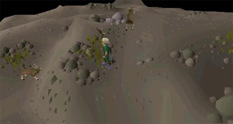 Eadgar's Ruse underground screenshot in OSRS