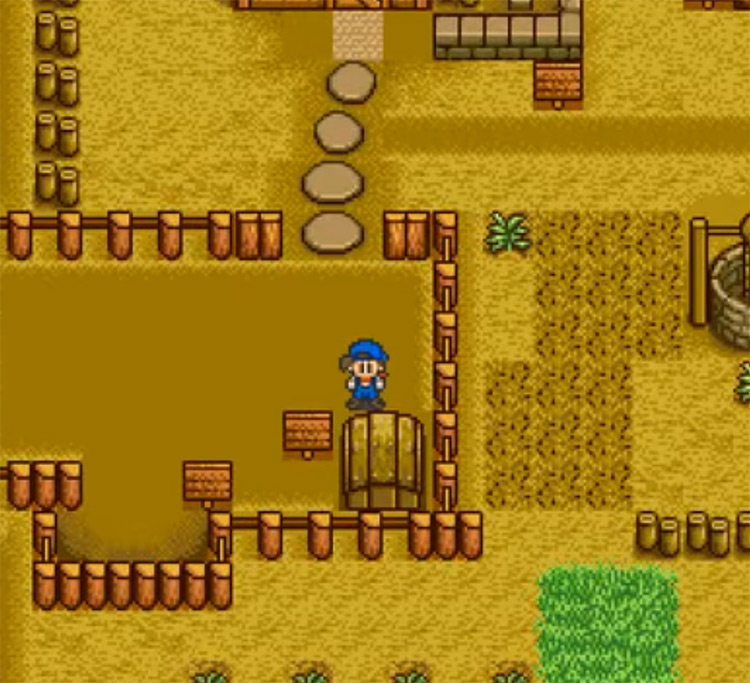 Harvest Moon SNES gameplay screenshot