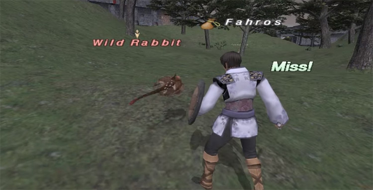 Red Mage fighting Wild Rabbit in FFXI