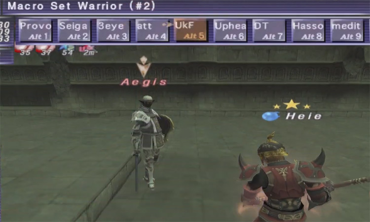 Warrior character in FFXI