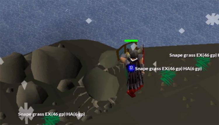 Rock crab training screenshot in OSRS