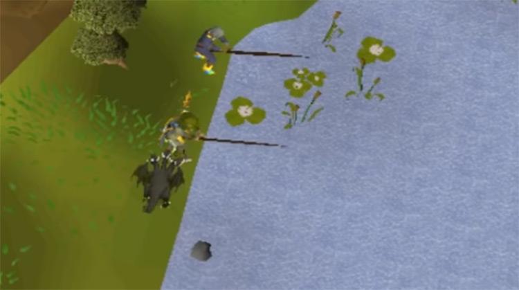 Fishing in lake in OSRS