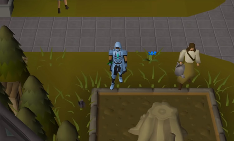 Woodcutting inside the guild in OSRS