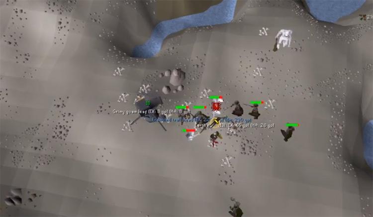 Ice Trolls Training in OSRS