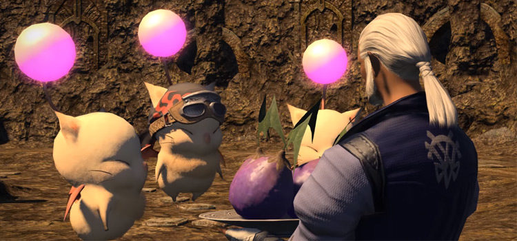 FFXIV Kupo Nuts: What They're Used For & How To Get 'Em