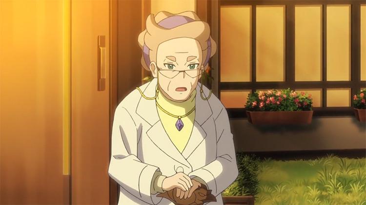 Professor Magnolia from Pokémon anime