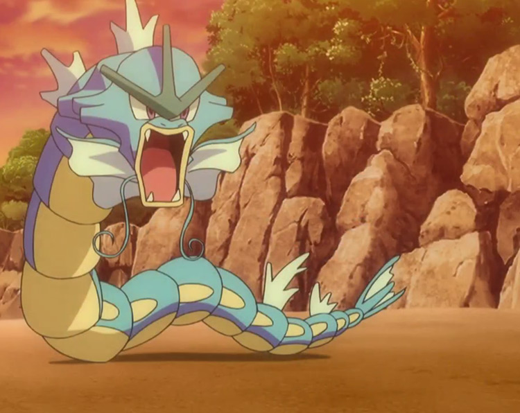 Gyarados Pokemon in the anime