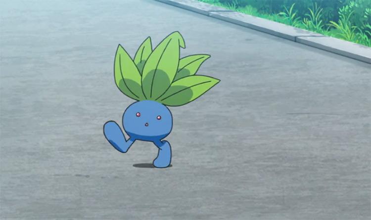 Oddish Pokemon anime screenshot