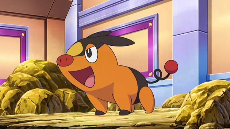 Tepig Pokemon anime screenshot