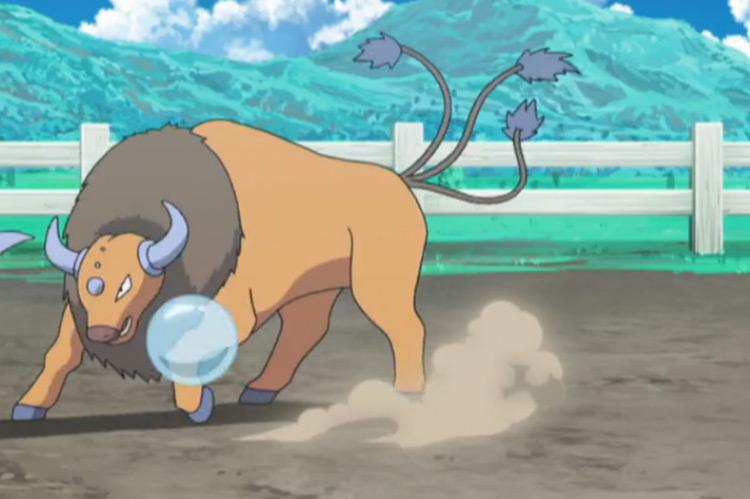 Tauros from Pokemon anime