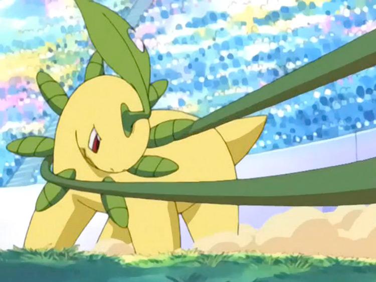Bayleef Pokemon in the anime