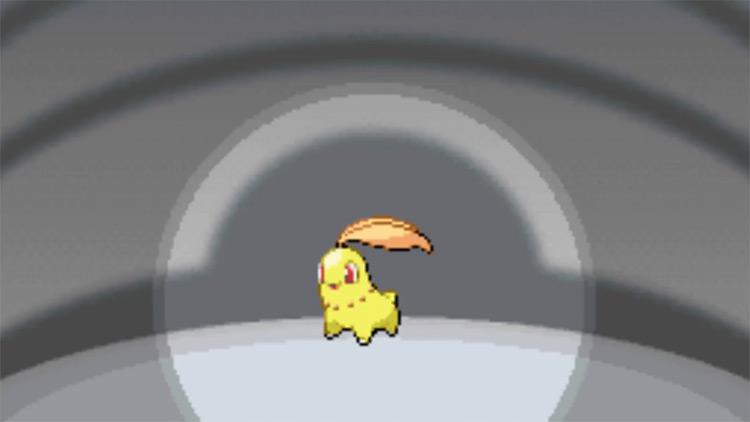 Shiny Chikorita in Pokémon HGSS